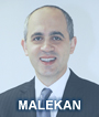 Dr. Ramin Malekan: Cardiothoracic Surgeon, Associate Professor, Section of Cardiothoracic Surgery